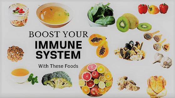 18 Foods to Boost the Immunity System